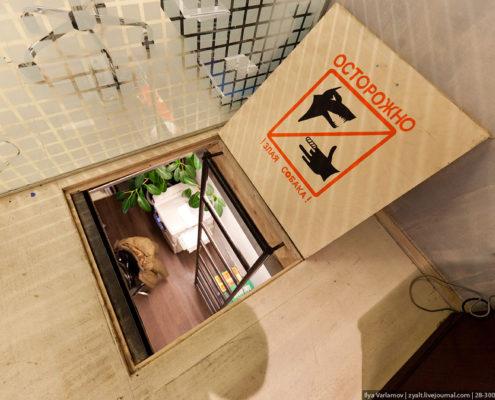 Офис агентства Роуз лестница к начальству